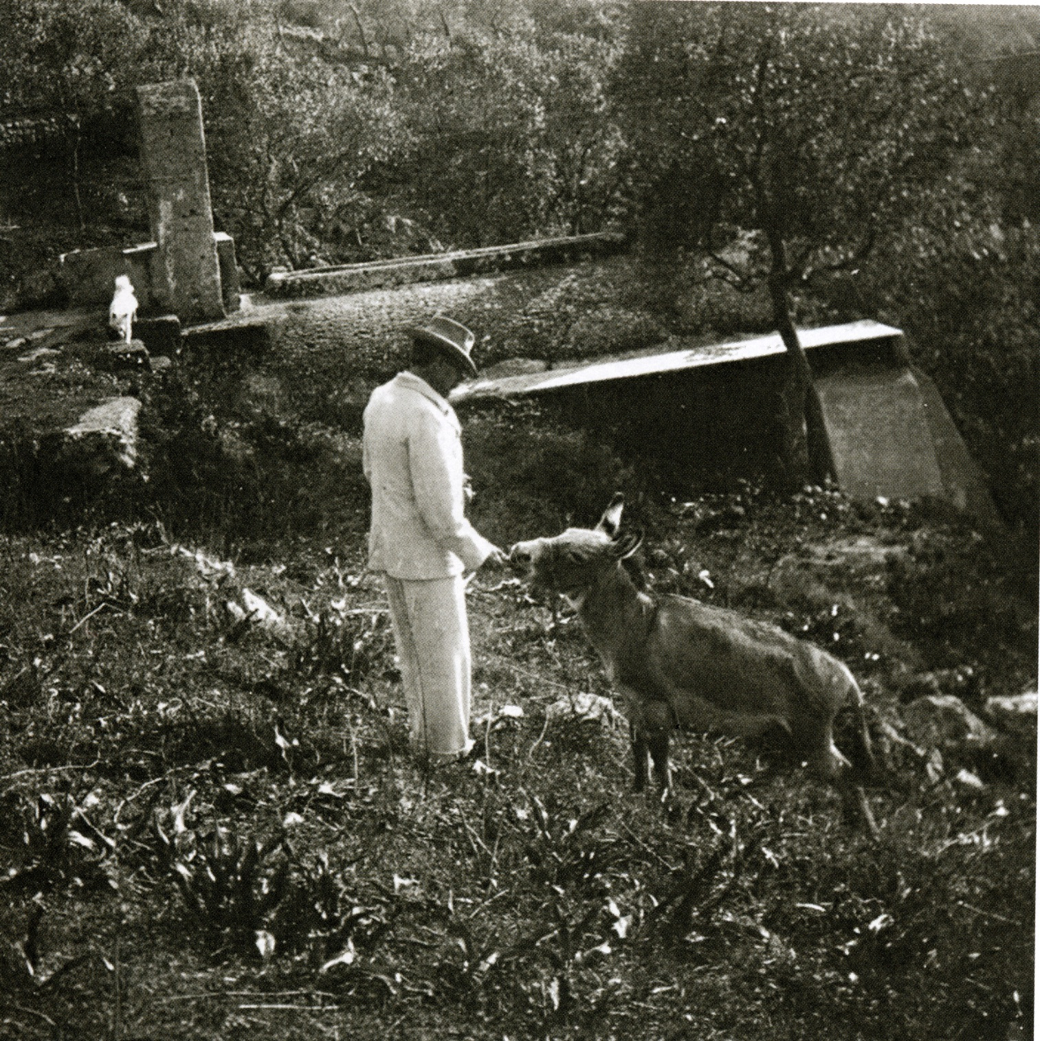 Munthe with the donkey Rosina